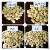Raw cashew nuts/ Cashew Kernels/ WW320/450/240/180/210/LBW/LP/WS/LP/DW/SP/BB Suppliers