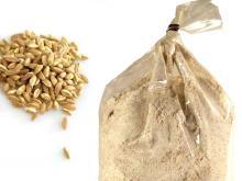 Organic Whole Flour Hulled Wheat