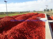 Tomato paste 28/30HB