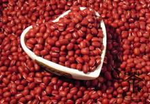 Best Grade Azuki Beans / Small Red Beans/Red Kidney Beans