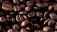 best quality Robusta Coffee Bean