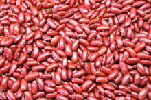Non-Gmo Size 2.8mm-4.5mm Dried Azuki Red Bamboo Bean