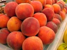 Fresh Peaches suppliers
