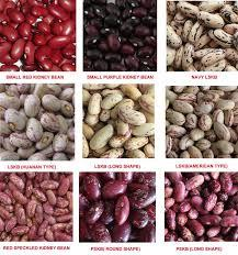 New Crop Dry Bulk Red/Dark/Pinto/Sugar Speckled Beans For Sale