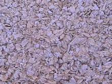 Rolled / Flakes Oats / White oats Suppliers