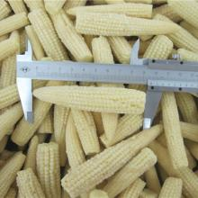Frozen Baby Corn Whole, Cuts or Slices