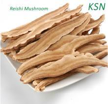 Dried Reishi Mushroom slice