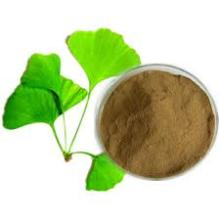 Hot Sale Ginkgo Biloba Extract with competitive price