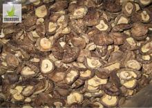 dry shiitake dried shiitake dried champignon