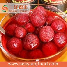 Sour Tropical Canned Fruit Canned Yang Mei Berry Fruit In Natural Juice