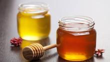 High quality natural manuka honey of this year