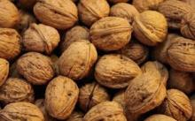 High Quality Raw Walnuts suppliers