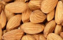 Raw Almond Nuts/Sweet Almond Nuts for sale