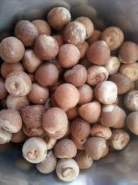 WHOLE AND SPLIT BETEL NUTS FOR SALE