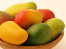 Fresh Mango Fruits