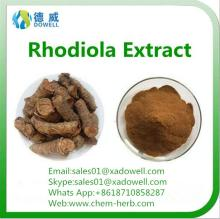 Well sold and top quality rhodiola rosea powder extract with competitive price
