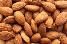 High quality Almond Nut