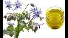 Black Seed Oil, Blackcurrant Seed Oil, Borage Seed Oil, Flaxseed Oil