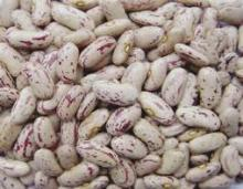 Light Speckled Kidney Beans, Long shape