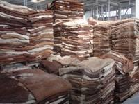 Dry and Wet Salted Cow Hide