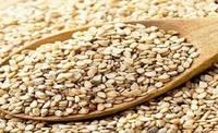 Purity Sesame Seeds