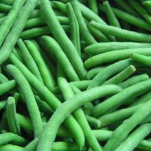 frozen vegetables IQF green benas in bulk package