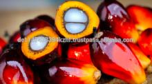 Refined and Crude Palm Oil top grade