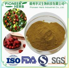 Instant Red date extract powder