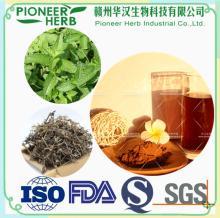 Instant Mesona extract powder, Instant Mesona chinensis Benth extract powder