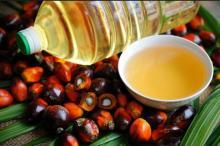 Refined Palm Oil, Crude Palm Oil