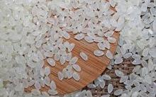 Best Quality Japonica Rice