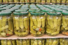 Canned Cucumber (gherkins)