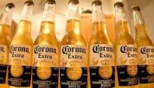 Corona Beer Bottle and Cans available