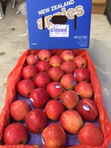 New Zealand Royal Gala Apples, Apples and all other fruis