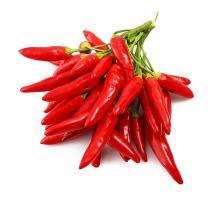 China Origin Red Pepper Chili