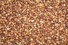 Buckwheat Kernels & Buckwheat Hulls