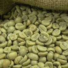 Grade A Green Coffee Beans