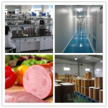 Nisin natural food preservative, China top brand, 500 ton per year