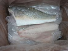 Red drum fillet with skin on