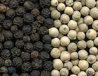 Quality White Pepper and Also Black Pepper
