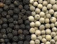 Black Pepper 500 Gl.