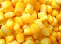 Top Quality Canned Sweet Corn