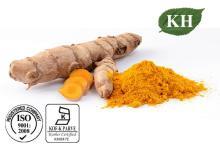 Natural  Turmeric   Extract  Curcuminoid 10%~95% by HPLC