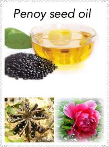 Best Penoy seed oil, higher alpha-linolenic acid than oliver oil&peanut oil