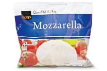 Cheese Mozzarella Goat Cheese