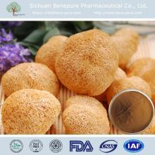 Hericium erinaceus Beta 1,3/1,6 D gluca 10%,20%,40%  Fungi   Polysaccharide
