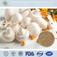White button  mushroom  polysaccharide 10%-20%