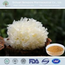 Supply different kind of edible fungi, Tremella Fuciformis Extract ,White Fungus Extract