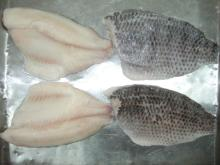 frozen tilapia skin on