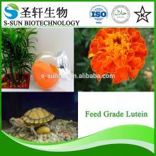 Lutein marigold flower extract powder